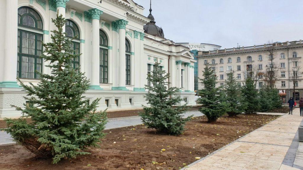 În scuarul Mihai Eminescu din capitală au fost plantați brazi. Primarul promite și alți copaci (FOTO)
