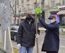 Сотрудники мэрии ипослы зарубежных стран посадили деревья вцентре Кишинева (ФОТО)