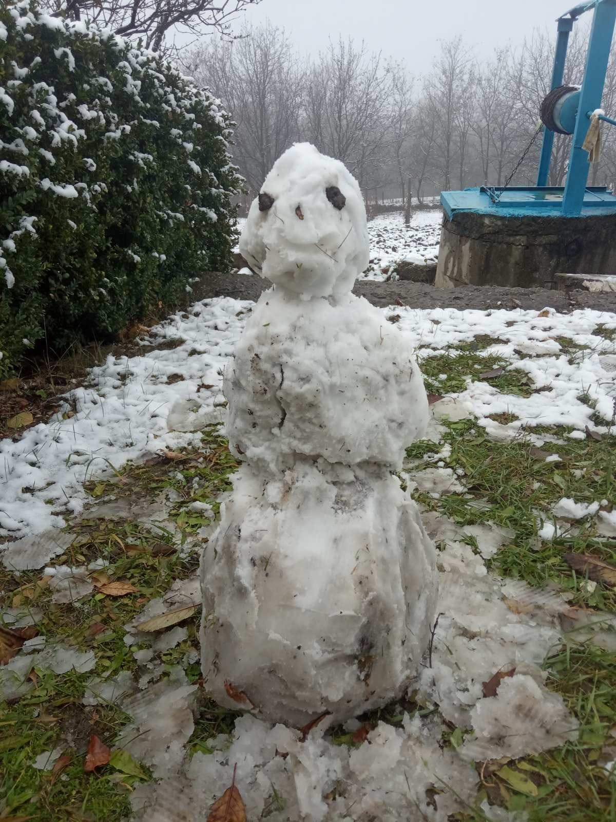 В некоторых районах Молдовы выпал первый снег (ФОТО/ВИДЕО)