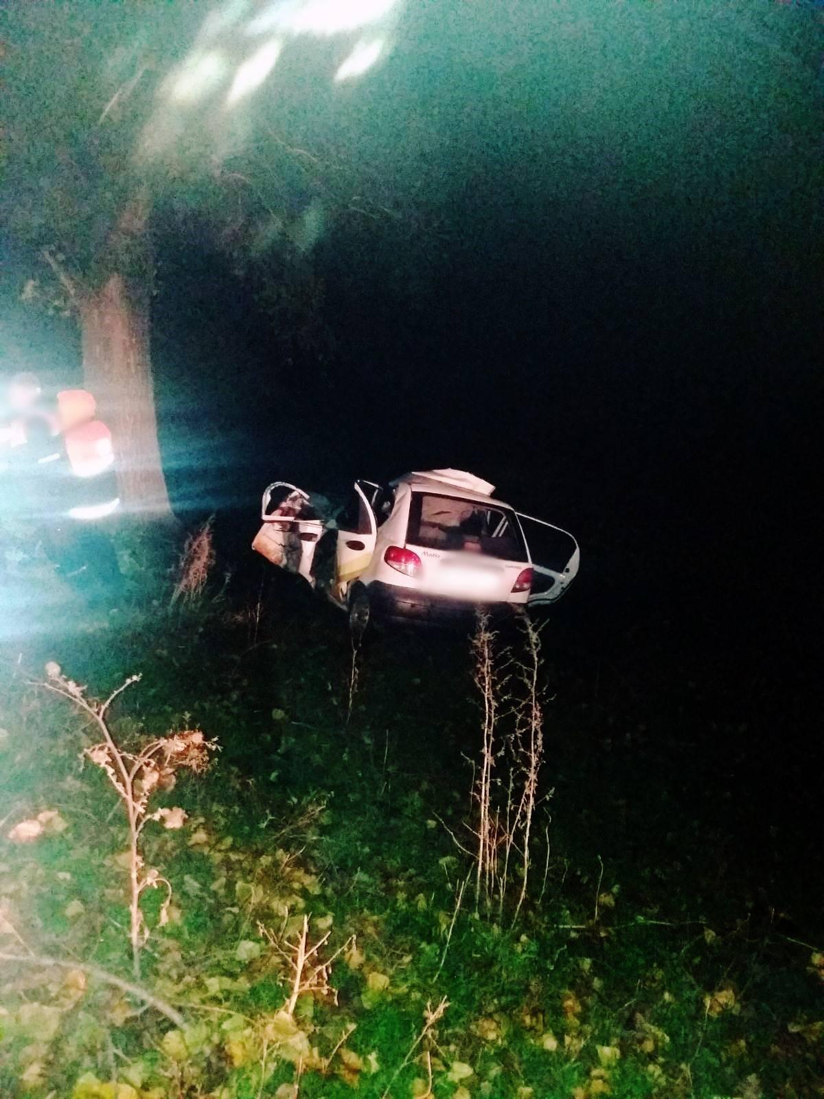 ВОргеевском районе автомобиль врезался вдерево. Два человека погибли (ФОТО)