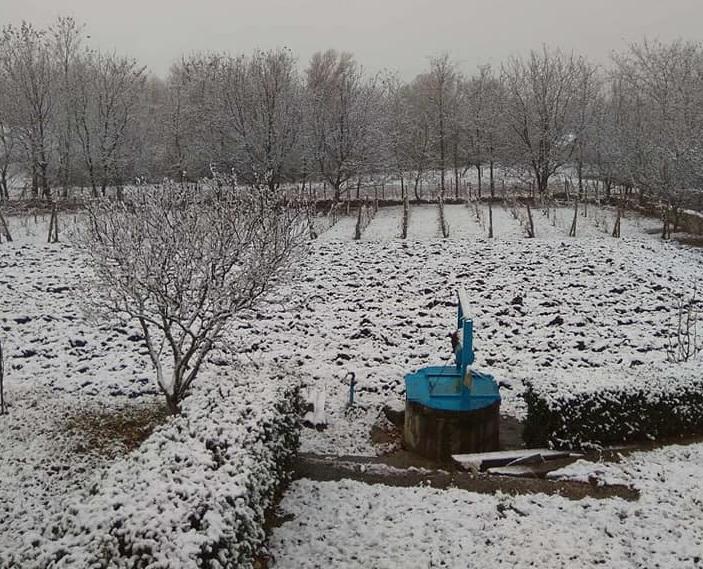 În Moldova au căzut primii fulgi. Cum va fi vremea săptămâna viitoare (FOTO/VIDEO)