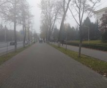 Протест в центре Кишинева завершился. На проспекте Штефана чел Маре возобновилось движение (ФОТО)