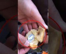 Психотропные таблетки впосылках. ВМолдове раскрыли схему контрабанды наркотиков (ВИДЕО)