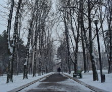NM Espresso: despre înăsprirea măsurilor de carantină în Moldova, noile mărturii ale lui Platon și despre (ne)sancționarea judecătorilor