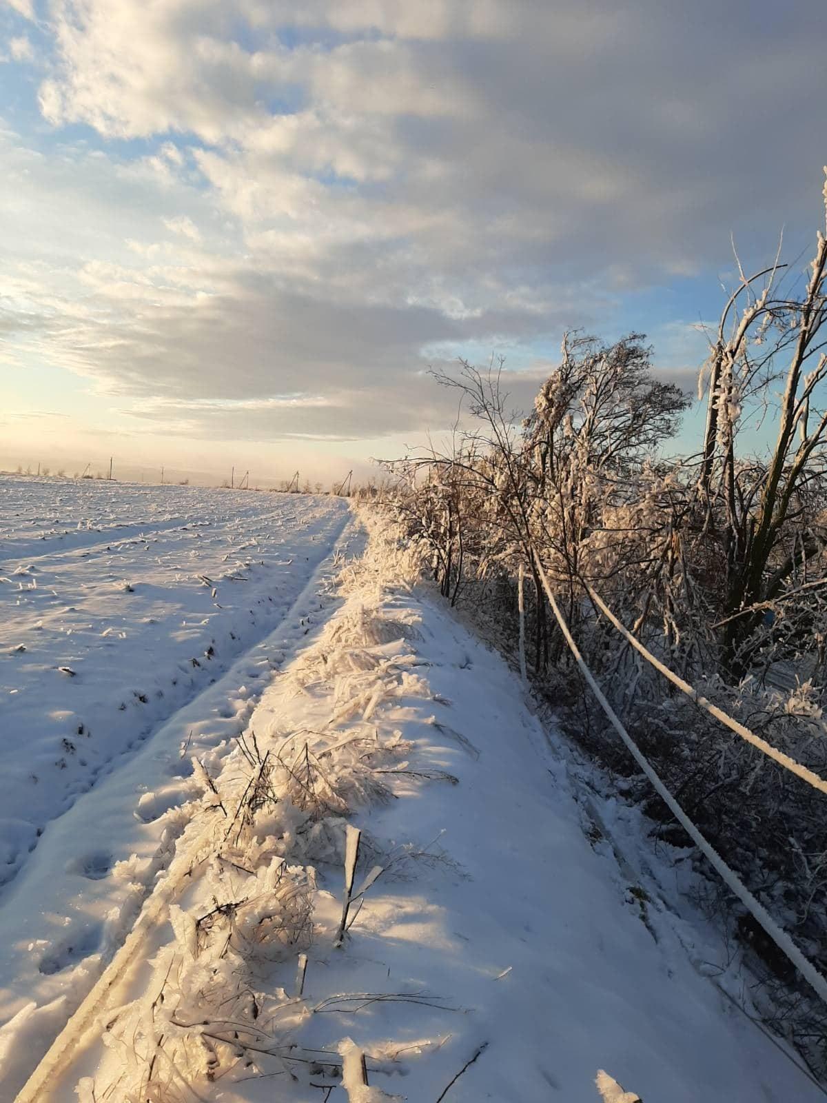 ВМолдове 60населенных пунктов остались без электричества из-за непогоды (ФОТО)