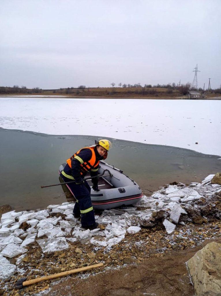 O lebădă blocată pe râu în raionul Râșcani a fost salvată de la îngheț de pompieri (VIDEO)