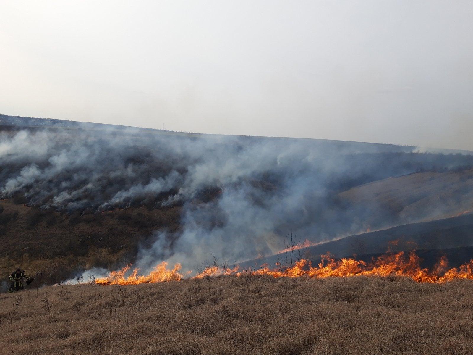 ВМолдове засутки произошло более 10природных пожаров (ФОТО, ВИДЕО)