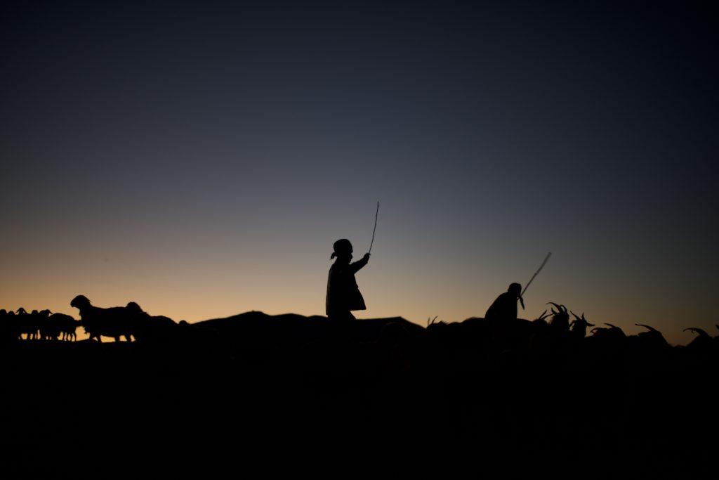 Кочевники, poverty porn и«столкновение цивилизаций». Интервью NMсмолдавским фотографом, проехавшим 15тыс.кмсиранским племенем Qashqai