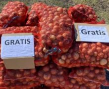 «Лучше отдать бесплатно, чем выбросить». Как фермеры в Молдове (не) реализуют свою продукцию