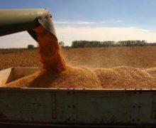 Slusari acuză TransOilde presiuni asupra Președinției și Guvernului, pentru a permite exportul de grâu. Reacția companiei