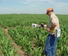 Пестицид подкрался незаметно. Как продавцы удобрений не поделили рынок с Марчелом Рэдуканом