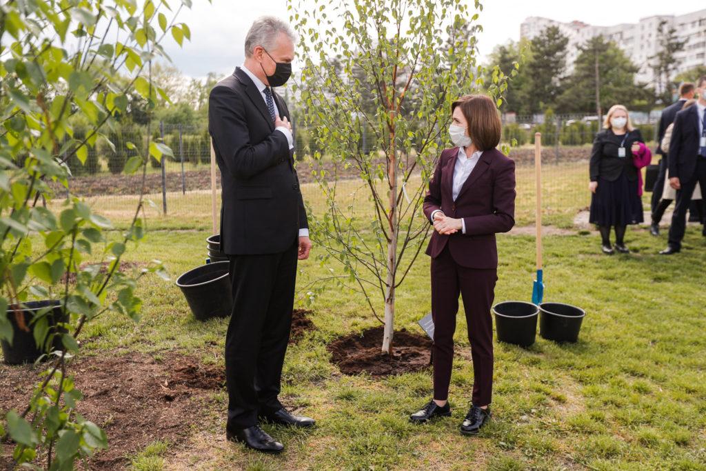 Санду иНауседа посадили березы вБотаническом саду (ФОТО)