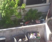 На что жалуетесь? Как мэрия Кишинева решает городские проблемы с помощью eu.chisinau.md