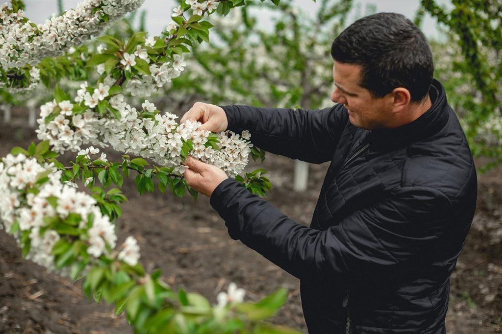 """Timcu Oleg: """"În agricultură, o greșeală te costă scump și îți poate afecta întreaga recoltă"""""""