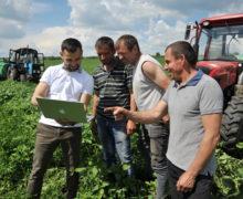 Agricultură pe ecranul smartphone-ului. O mică întreprindere agricolă din Moldova cucerește tehnologiile digitale
