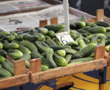 Раскатали огурцы. Почему в Молдове выбрасывают овощи