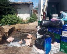 ВБельцах обнаружили 1600кг мяса, зараженного сальмонеллой (ВИДЕО)