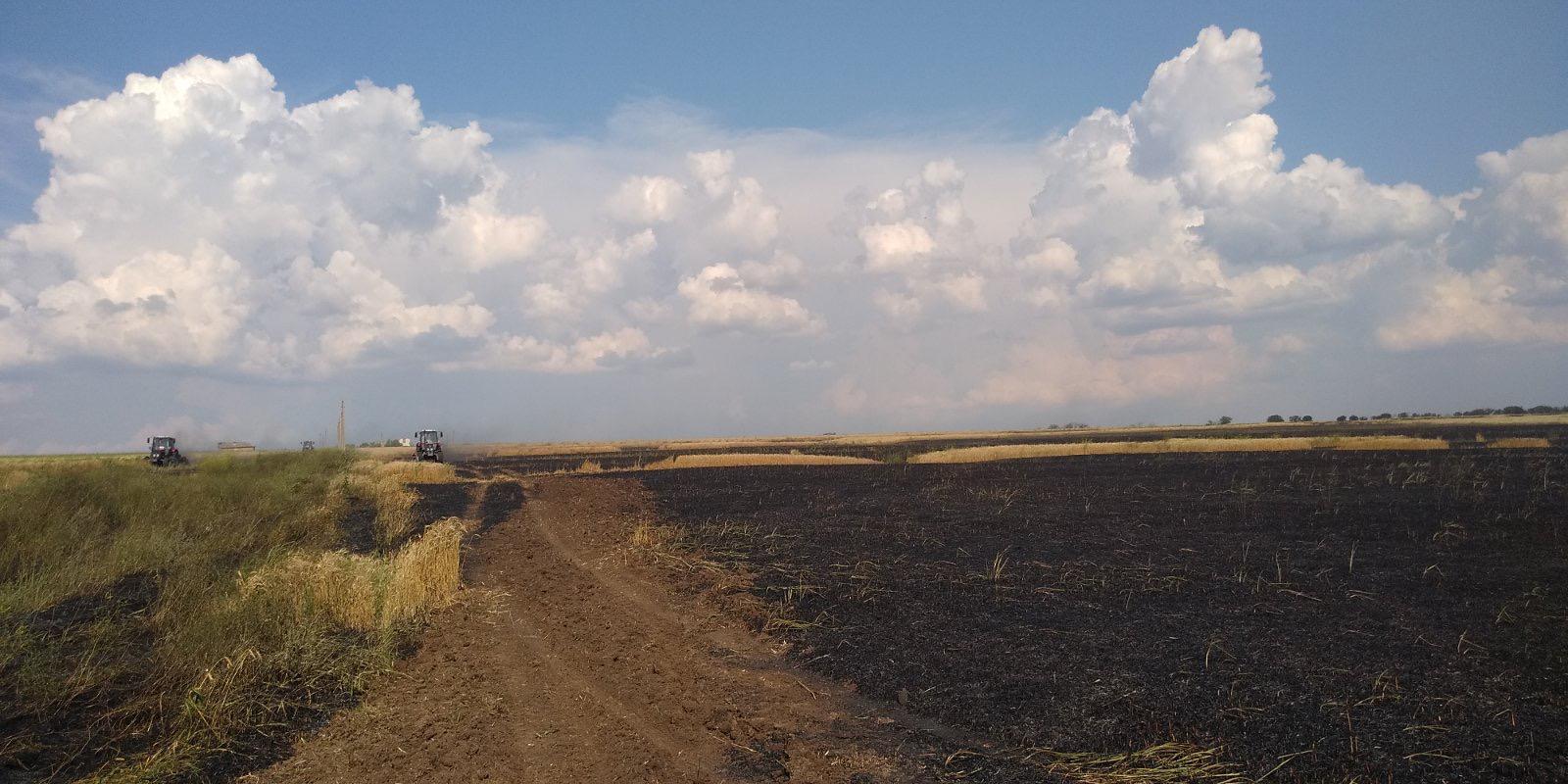 ВТараклийском районе произошел пожар. Огонь уничтожил 35га пшеницы