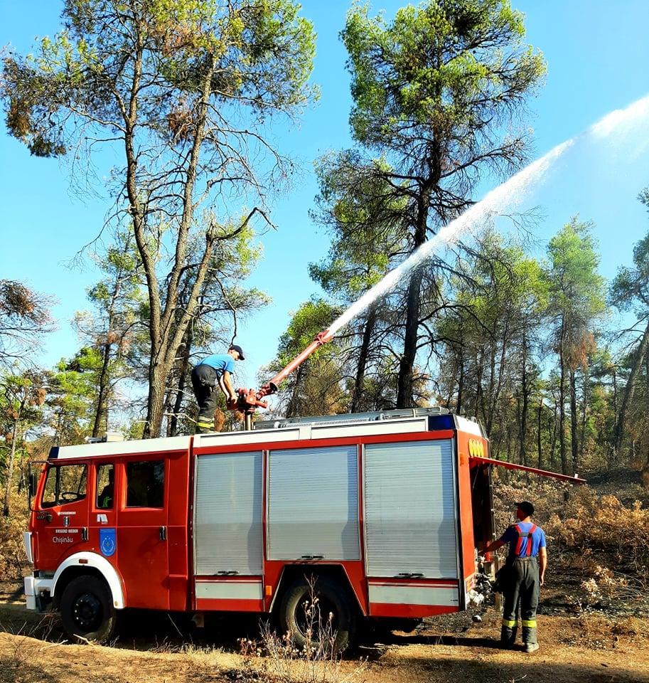 Пожарные изМолдовы засутки потушили 106 очагов возгорания вГреции (ФОТО)