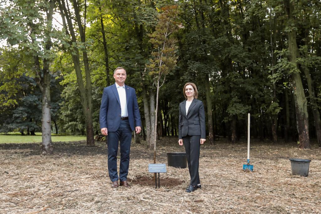 Maia Sandu l-a dus pe Andrzej Duda la Grădina Botanică. În mai, președinta a plantat mesteacăni cu liderul Lituaniei (FOTO)
