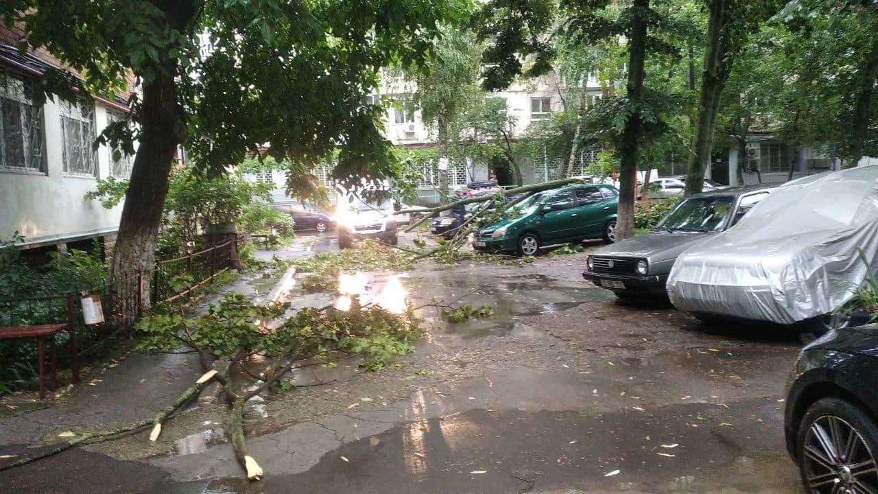 Copaci doborâți, drumuri blocate și localități fără lumină. Consecințele ploilor torențiale (FOTO/VIDEO)
