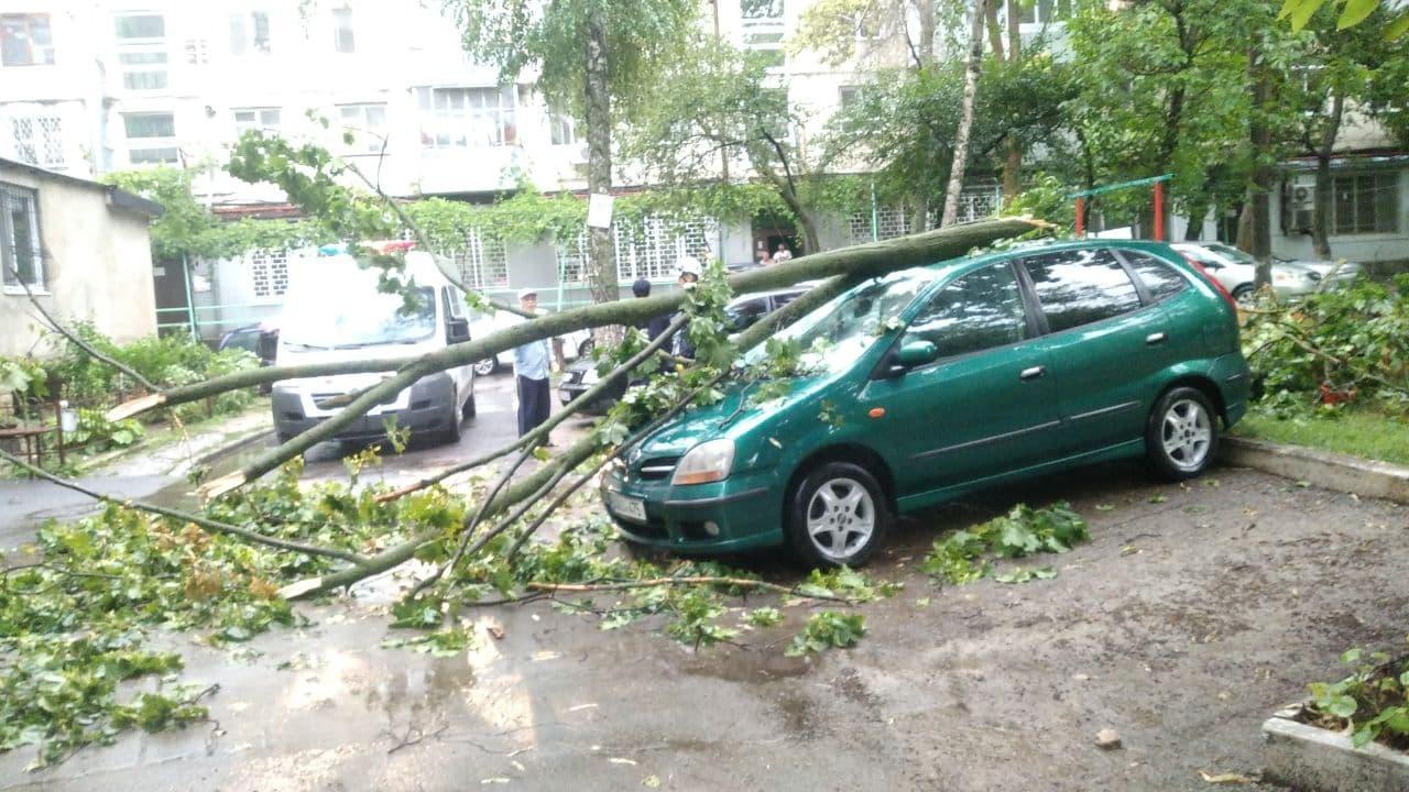 Затопленные дороги, поваленные деревья. Вочто ливень превратил улицы Кишинева (ФОТО/ВИДЕО)