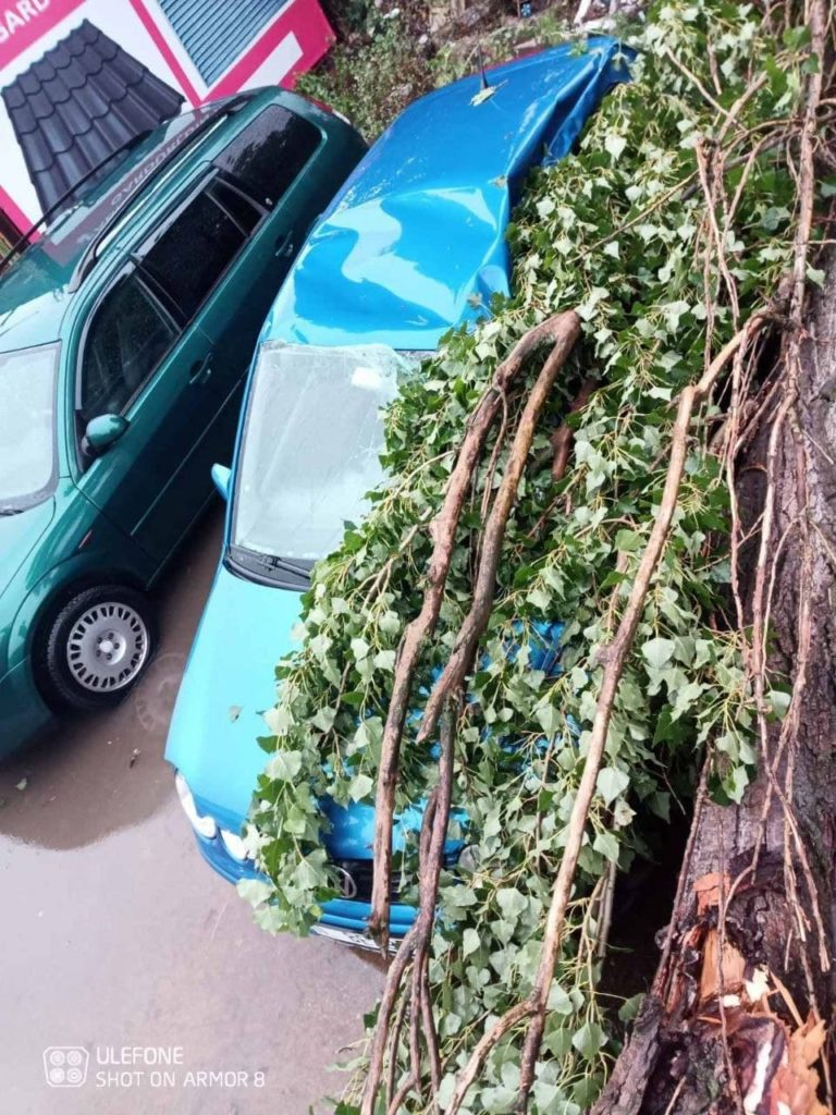Doi copaci au fost doborâți de vânt peste niște mașini parcate în capitală (FOTO)