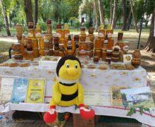 Вцентре Кишинева проходит ярмарка меда