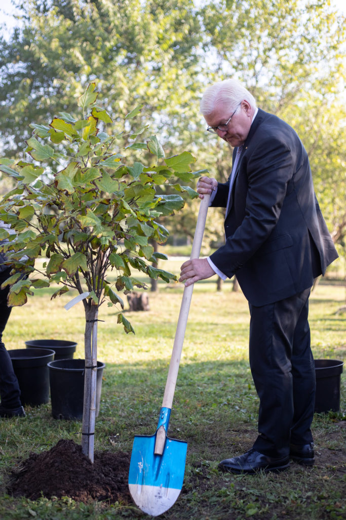Tradiția continuă. Maia Sandu l-a invitat pe omologul său german să sădească un arbore la Grărdina Botanică (FOTO)