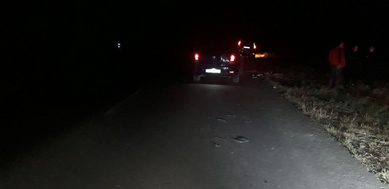 ВХынчештском районе автомобиль насмерть сбил пешехода