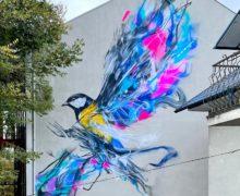 Бразильский художник L7Matrix украсил граффити здание вцентре Кишинева (ФОТО)