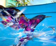 Бразильский художник L7Matrix украсил граффити еще одно здание вцентре Кишинева (ФОТО)