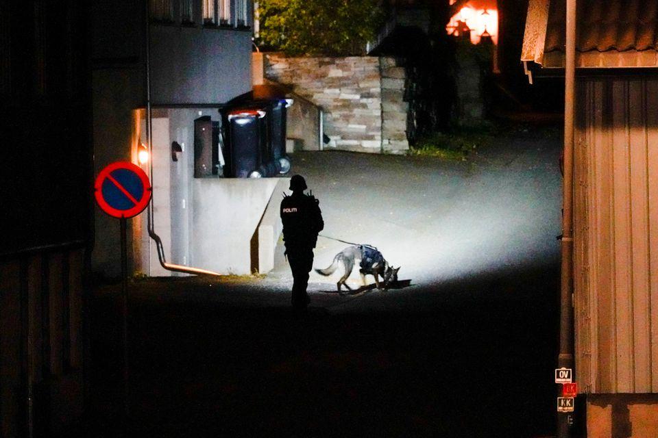 Norvegia: un bărbat înarmat cu un arc a ucis 5 oameni și a rănit alți 2 (FOTO/VIDEO)
